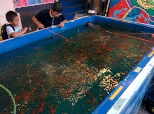 Atracción real de pescar en Odaiba, Tokyo