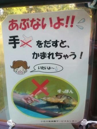Señal de peligro al tocar a las tortugas, en Japón