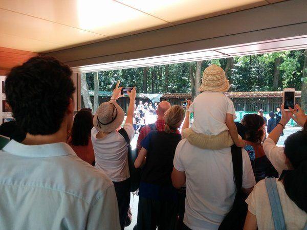 Turistas sacando fotos a boda japonesa