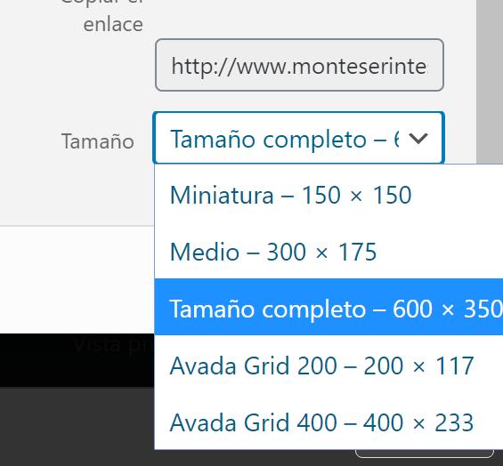 Cómo usar la plantilla Avada para Wordpress 7