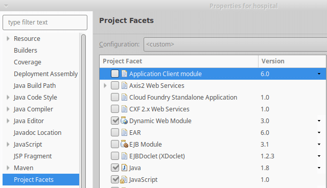project java facets